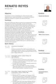 insurance consultant resume samples sample insurance resume