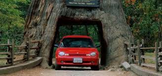 drive thru tree park