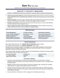 Business Resume Business Resume Experienced It Project Manager