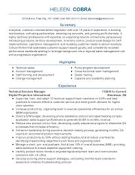 resume test manager visualcv lebenslauf muster resume test pic test manager cv technical manager resume sample