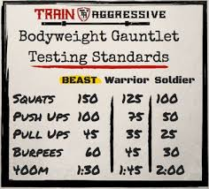 basic to beast plete bodyweight workout program