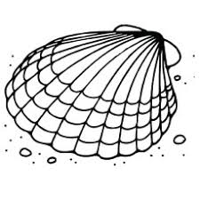Small Picture Top 25 Free Printable Shell Coloring Pages Online