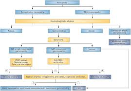 diagnosis and treatment of chronic acquired demyelinating polyneuropathies nature reviews neurology