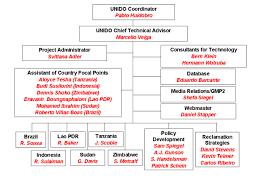 Project Organization Chart Fascinating Global Mercury Project Organization Chart