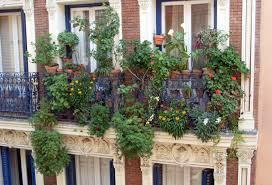 Small Picture Apartment Plant Ideas Imanada Gorgeous Balcony Garden Design Home