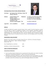 Resume Cv Example Pdf Curriculum Vitae Format For Lawyers Template