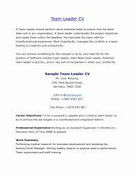 Team Leader Job Description For Resume 100 Awesome Photos Of Team Leader Resume format Bpo Resume 23