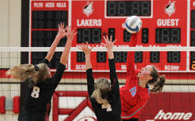 DL picks up eighth win in 10 games | Detroit Lakes Tribune