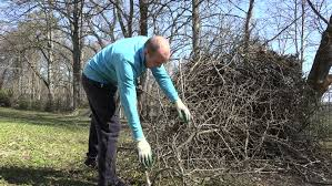 Video Shaping And Pruning Fruit Trees  Martha StewartPruning Fruit Trees Video