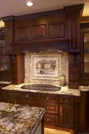 Kitchen Cabinet Wood Choices Kitchen Cabinet Doors Vancouver Alkamediacom
