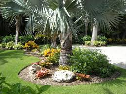 Small Picture images of florida landscapes South florida landscape design
