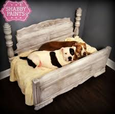Upcycled Pet Beds. Painted FurnitureDog ...