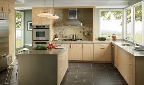 Gallery One Light Colored Kitchen Cabinets Amazing Design