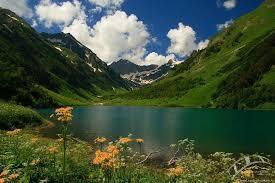 Заповедник Кавказский Вода источник красоты кавказский заповедник фото
