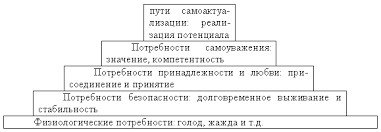 А Маслоу гуманистическая теория личности Рефераты ru В основе этой схемы лежит правило что доминирующие потребности расположенные внизу должны быть более или менее удовлетворены до того