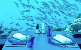 Image Animators Palate How To Dine At The Worlds First Underwater Restaurant Travel Leisure Travel Leisure How To Dine At The Worlds First Underwater Restaurant Travel