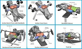 Muscle Gain Workout Chart Top 6 Exercises To Build Chest Muscles Chest Workout