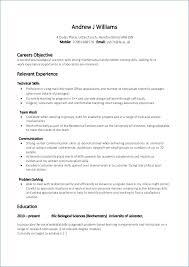 Sample Resume Format Pdf Resume Example