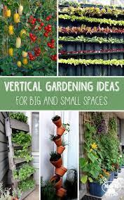 vertical vegetable gardens