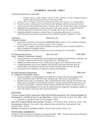 Best Executive Resume Writer   Sample Resume COO  amp  GM   Resume