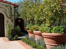 Design ideas for a mediterranean front yard vegetable garden landscape in  Los Angeles.