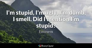 Stupid Quotes BrainyQuote Classy Stupid Quotes