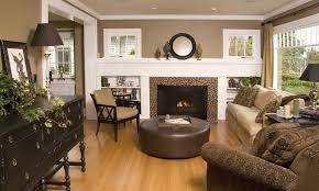 Earth Tone Living Rooms Home Decorating Interior Design Bath