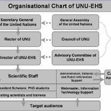 Organisational Chart Of Unu Ehs 60 Download Scientific