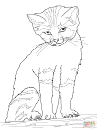 Small Picture Sand Cat coloring page Free Printable Coloring Pages