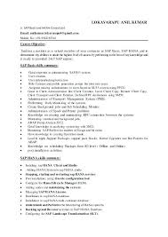 Sap Basis Resume Format Resume Example Collection