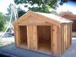 fullsize of prefeial dogs dog housebibserver insulated dog house wooden dog house plans extreme dog houses