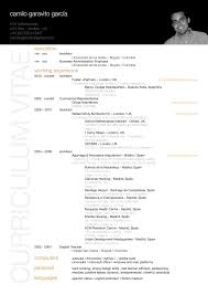 Resume Example Architecture Resume Pdf Download