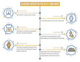 Drug Chart For Drugs In Your System Alcohol The Most Commonly Used And Abused Substance Rehab