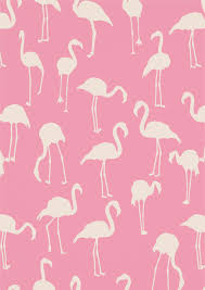 Flamingo Pattern Inspiration Flamingo Pattern Google Search Planning Pinterest Flamingo