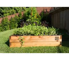 container gardening. Container Gardening By Minifarmbox