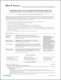 Developer Resume Examples Inspiration Business Developer Resume Business Development Resume Business