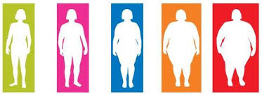 Underweight Normal Overweight Obese Chart How To Calculate Bmi Body Mas Index Calculator