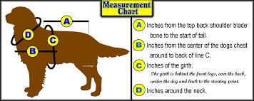 Neoprene Dog Vest Size Chart Kong Dog Harness Size Chart Bedowntowndaytona Com