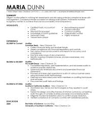 Internal Audit Resume Format Template Examples Good For Jobs Nice
