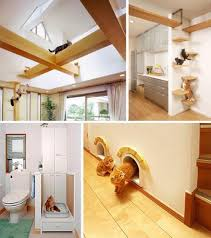 ultimate cat friendly interior design