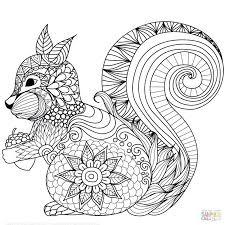 Squirrel Coloring Pages Squirrel Coloring Pages Printable