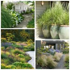 river rocks entry garden. With Complimentary Plants; Or Used As A Large Specimen Plant In The Lawn Garden, Grasses Are Often Overlooked Beautiful Landscape Plant. River Rocks Entry Garden I