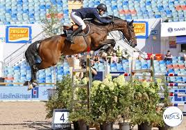 Peder Fredricson new rider of Zacramento | World of Showjumping