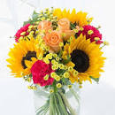 Flowers By Post   FREE UK Delivery & Pop-Up Vase   Flying Flowers
