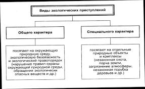 База рефератов Курсовая работа Международное право охраны  Схема 2 Основные международные природоохранительные организации