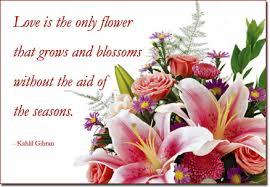 Love Flower Quotes Love Flower Desktop Wallpapers Love Flower Images for desktop and 74