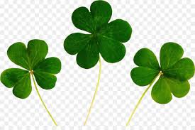 four leaf clover desktop wallpaper. Interesting Four Luck Fourleaf Clover Desktop Wallpaper Symbol  ST PATRICKS DAY Throughout Four Leaf Clover