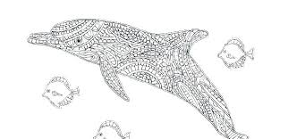 Coloring Pages Dolphins Coloring Pages Of Dolphins For Adults