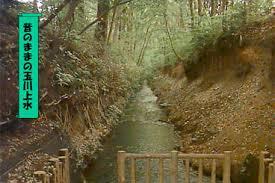「玉川上水工事」の画像検索結果