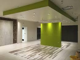 Greenish drop ceiling